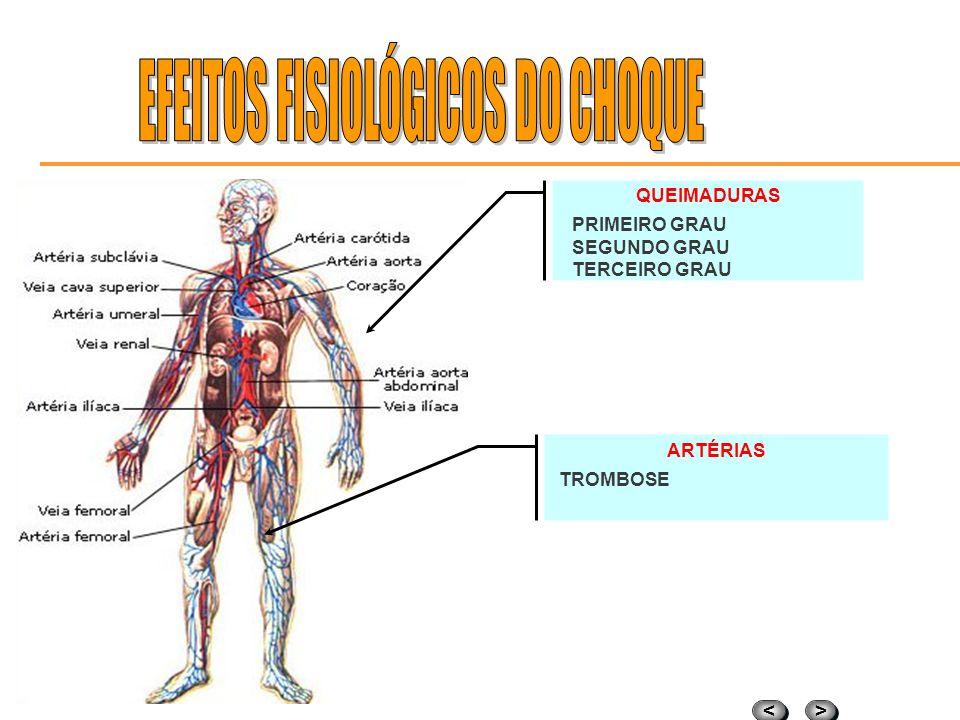 > > < < DANOS NO CÉREBRO Crise convulsiva; Edema; Isquemia; PARADA RESPIRATÓRIA Tetanização dos músculos do tórax; Paralisação do diafragma; Contração