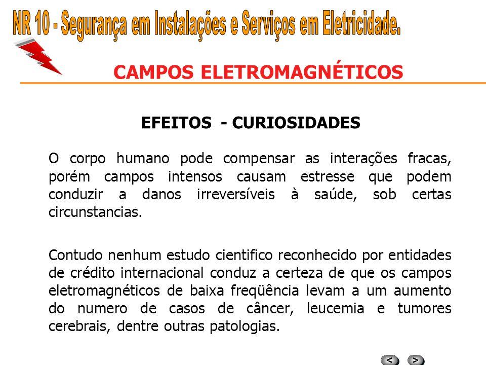 > > < < CAMPOS ELETROMAGNÉTICOS EFEITOS - CAMPOS ELETROMAGNÉTICOS Os efeitos mais prováveis no organismo são os seguintes: a) a) O campo elétricoE pod
