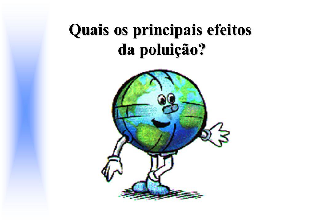 Quais os principais efeitos da poluição?