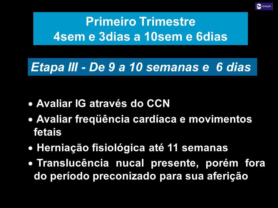 Etapa III - De 9 a 10 semanas e 6 dias Avaliar IG através do CCN Avaliar freqüência cardíaca e movimentos fetais Herniação fisiológica até 11 semanas