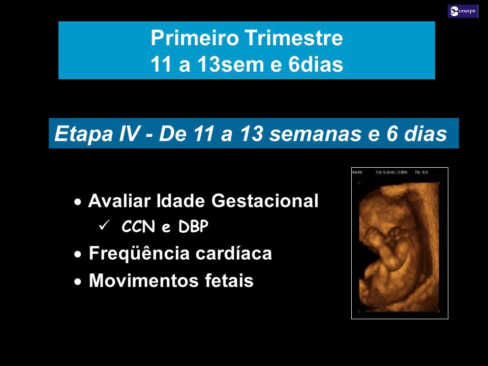 Etapa IV - De 11 a 13 semanas e 6 dias Avaliar Idade Gestacional CCN e DBP Freqüência cardíaca Movimentos fetais Avaliar Idade Gestacional CCN e DBP F