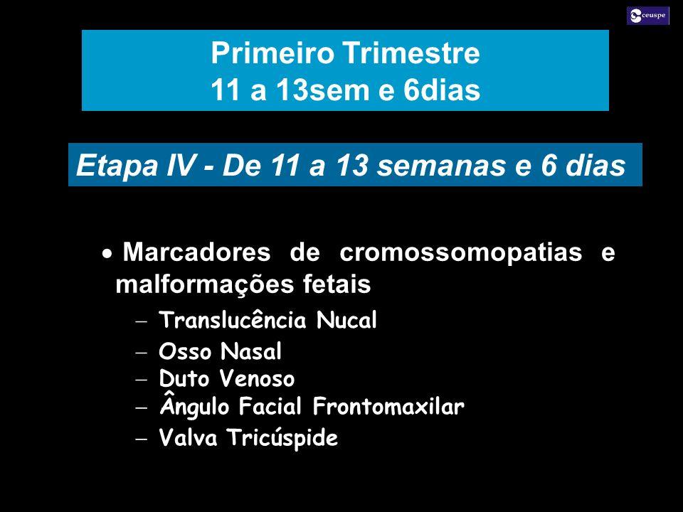 Marcadores de cromossomopatias e malformações fetais Translucência Nucal Osso Nasal Duto Venoso Marcadores de cromossomopatias e malformações fetais T