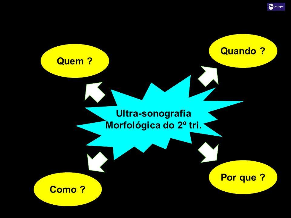 Quem ? Quando ? Como ? Por que ? Ultra-sonografia Morfológica do 2º tri.