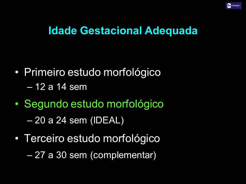 Primeiro estudo morfológico –12 a 14 sem Segundo estudo morfológico –20 a 24 sem (IDEAL) Terceiro estudo morfológico –27 a 30 sem (complementar) Prime