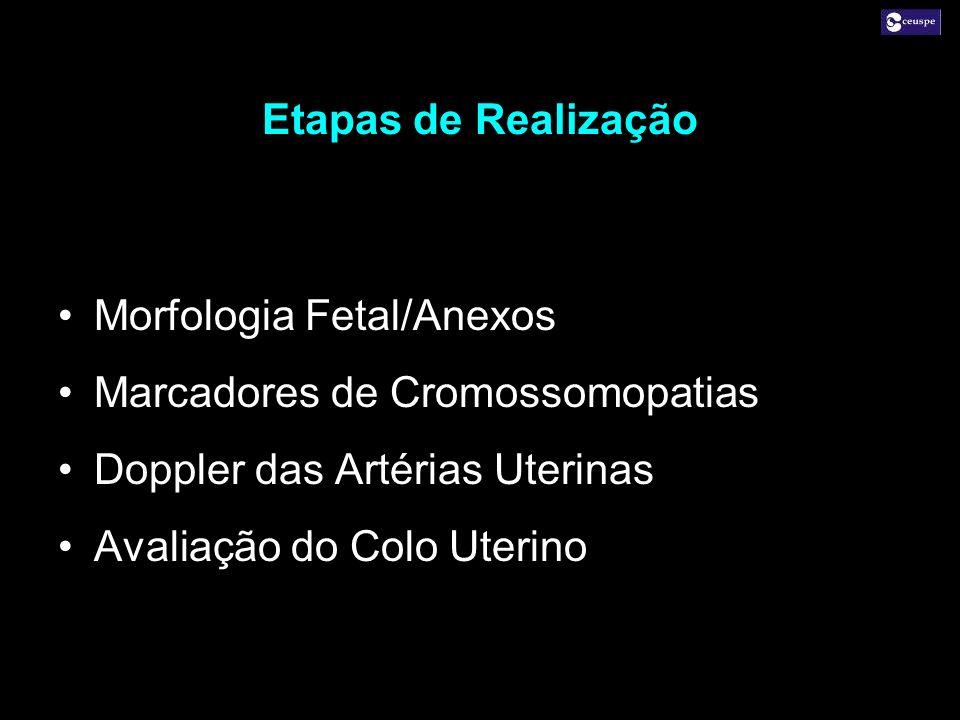 Etapas de Realização Morfologia Fetal/Anexos Marcadores de Cromossomopatias Doppler das Artérias Uterinas Avaliação do Colo Uterino Morfologia Fetal/A
