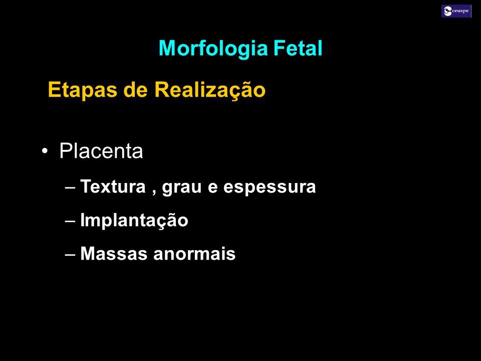 Placenta –Textura, grau e espessura –Implantação –Massas anormais Placenta –Textura, grau e espessura –Implantação –Massas anormais Morfologia Fetal E