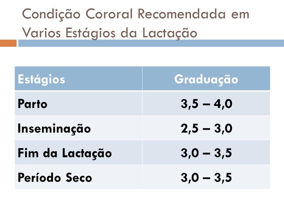 Condição Cororal Recomendada em Varios Estágios da Lactação EstágiosGraduação Parto3,5 – 4,0 Inseminação2,5 – 3,0 Fim da Lactação3,0 – 3,5 Período Sec
