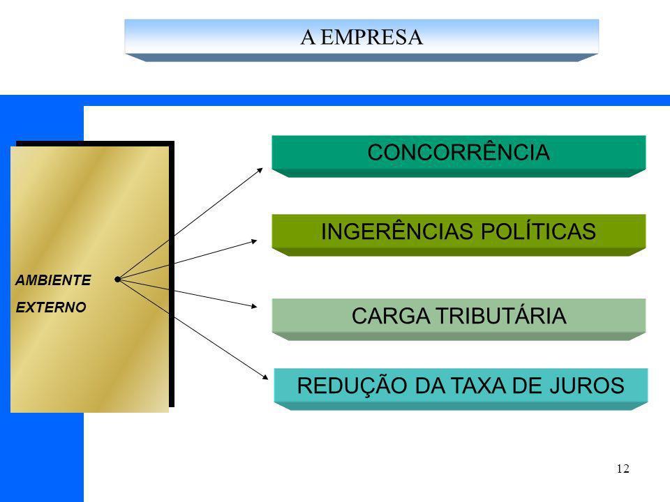 12 CONCORRÊNCIA INGERÊNCIAS POLÍTICAS AMBIENTE EXTERNO CARGA TRIBUTÁRIA REDUÇÃO DA TAXA DE JUROS A EMPRESA