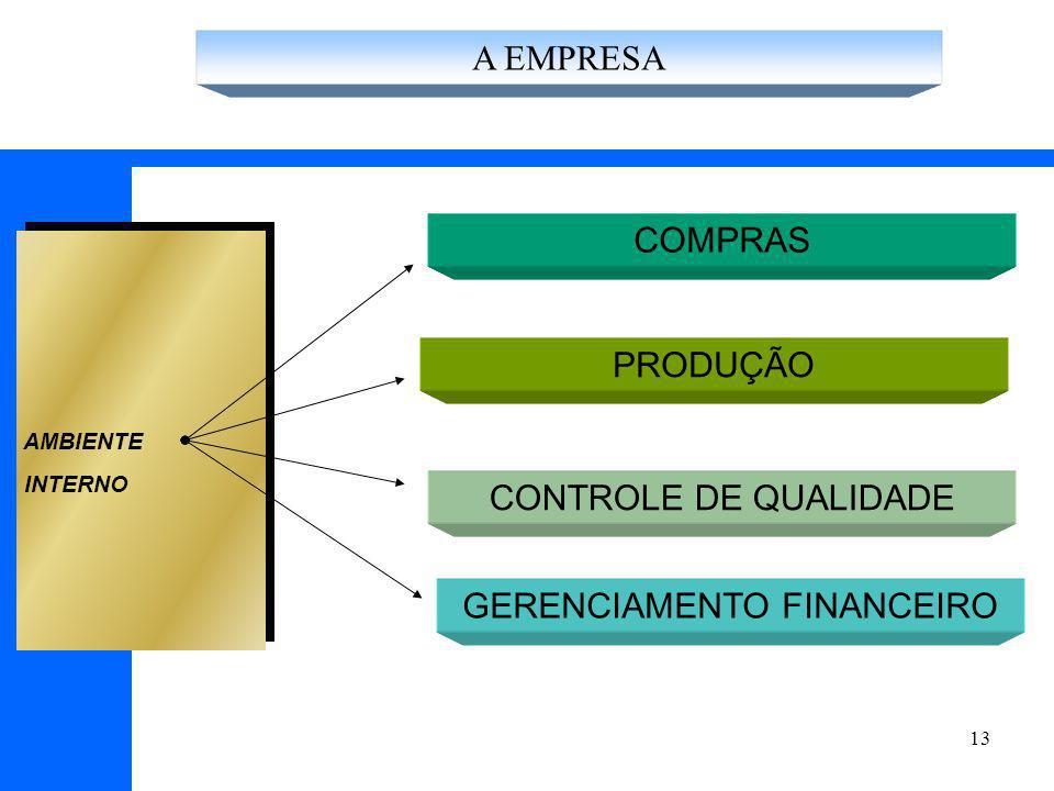 13 COMPRAS PRODUÇÃO AMBIENTE INTERNO CONTROLE DE QUALIDADE GERENCIAMENTO FINANCEIRO A EMPRESA