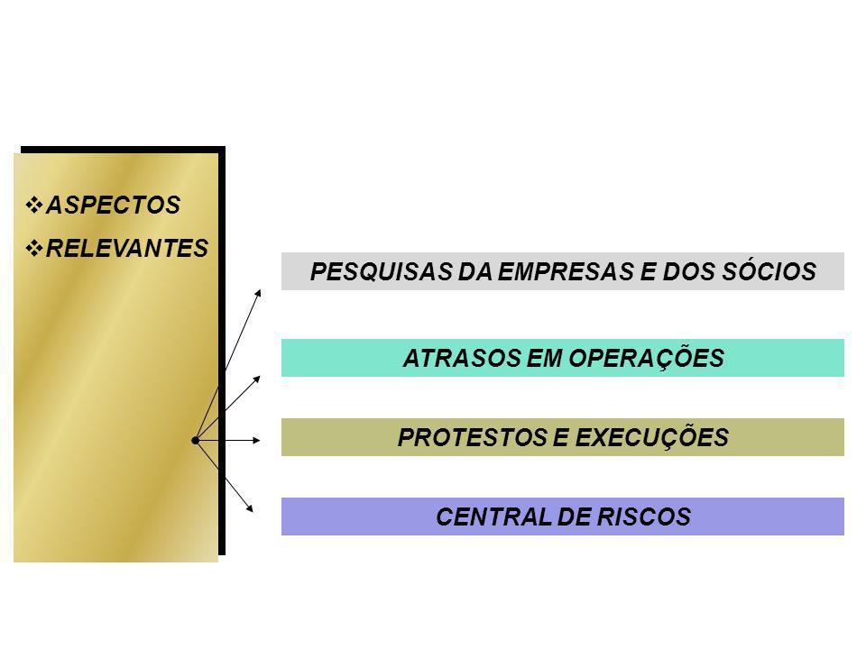ASPECTOS RELEVANTES ATRASOS EM OPERAÇÕES PROTESTOS E EXECUÇÕES CENTRAL DE RISCOS PESQUISAS DA EMPRESAS E DOS SÓCIOS