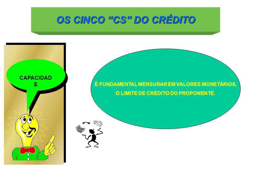 CAPACIDAD E É FUNDAMENTAL MENSURAR EM VALORES MONETÁRIOS, O LIMITE DE CRÉDITO DO PROPONENTE.