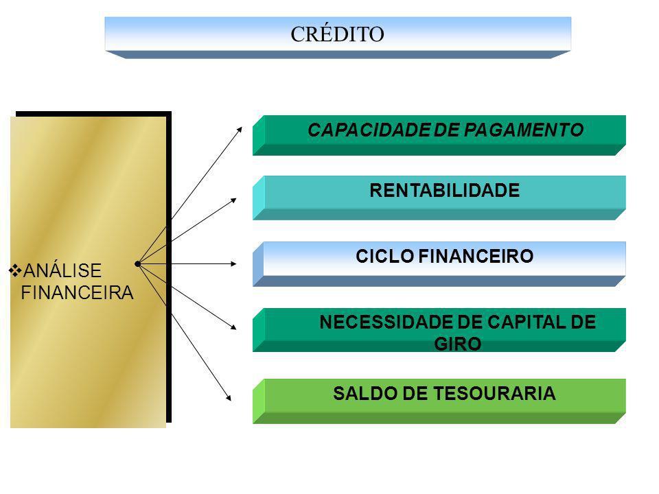 CAPACIDADE DE PAGAMENTO RENTABILIDADE ANÁLISE FINANCEIRA CICLO FINANCEIRO NECESSIDADE DE CAPITAL DE GIRO SALDO DE TESOURARIA CRÉDITO