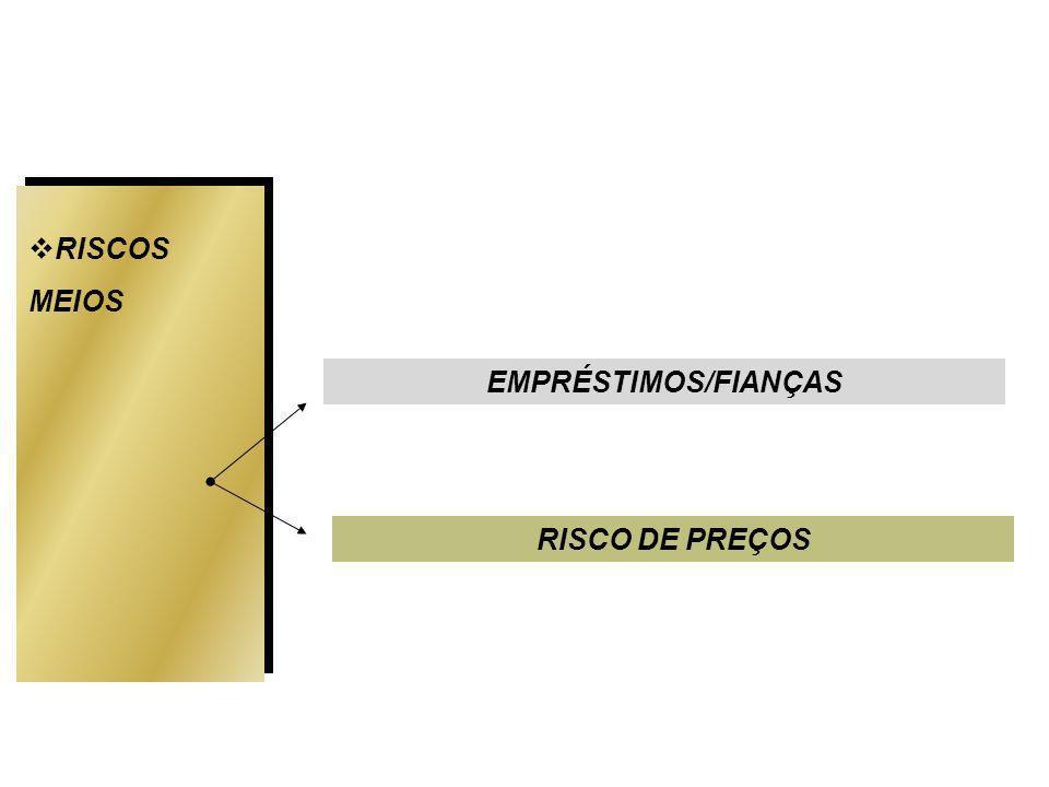 EMPRÉSTIMOS/FIANÇAS RISCOS MEIOS RISCO DE PREÇOS