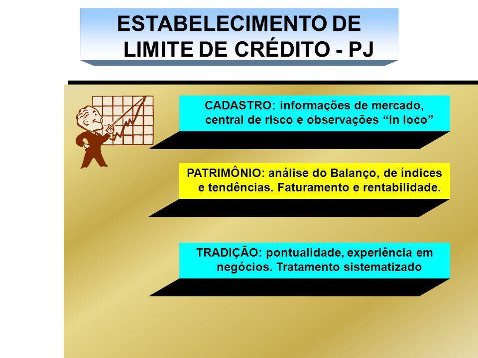 ESTABELECIMENTO DE LIMITE DE CRÉDITO - PJ CADASTRO: informações de mercado, central de risco e observações in loco PATRIMÔNIO: análise do Balanço, de índices e tendências.
