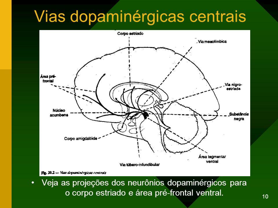 10 Vias dopaminérgicas centrais Veja as projeções dos neurônios dopaminérgicos para o corpo estriado e área pré-frontal ventral.