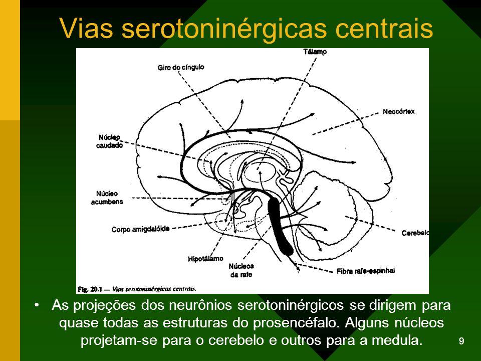 9 Vias serotoninérgicas centrais As projeções dos neurônios serotoninérgicos se dirigem para quase todas as estruturas do prosencéfalo. Alguns núcleos