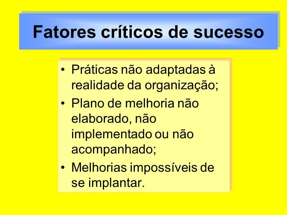 Práticas não adaptadas à realidade da organização; Plano de melhoria não elaborado, não implementado ou não acompanhado; Melhorias impossíveis de se i