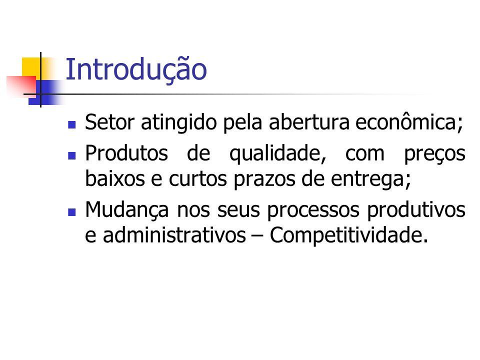 Introdução Setor atingido pela abertura econômica; Produtos de qualidade, com preços baixos e curtos prazos de entrega; Mudança nos seus processos pro