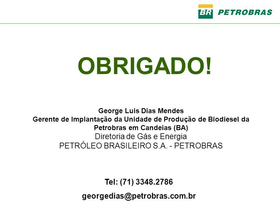 Tel: (71) 3348.2786 georgedias@petrobras.com.br George Luis Dias Mendes Gerente de Implantação da Unidade de Produção de Biodiesel da Petrobras em Can