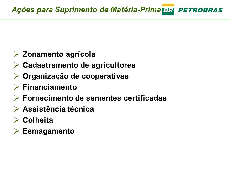 Zonamento agrícola Cadastramento de agricultores Organização de cooperativas Financiamento Fornecimento de sementes certificadas Assistência técnica C