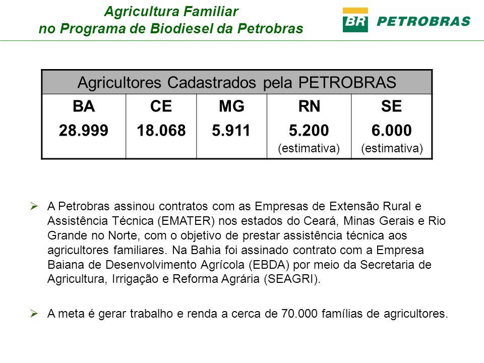 Agricultura Familiar no Programa de Biodiesel da Petrobras A Petrobras assinou contratos com as Empresas de Extensão Rural e Assistência Técnica (EMAT