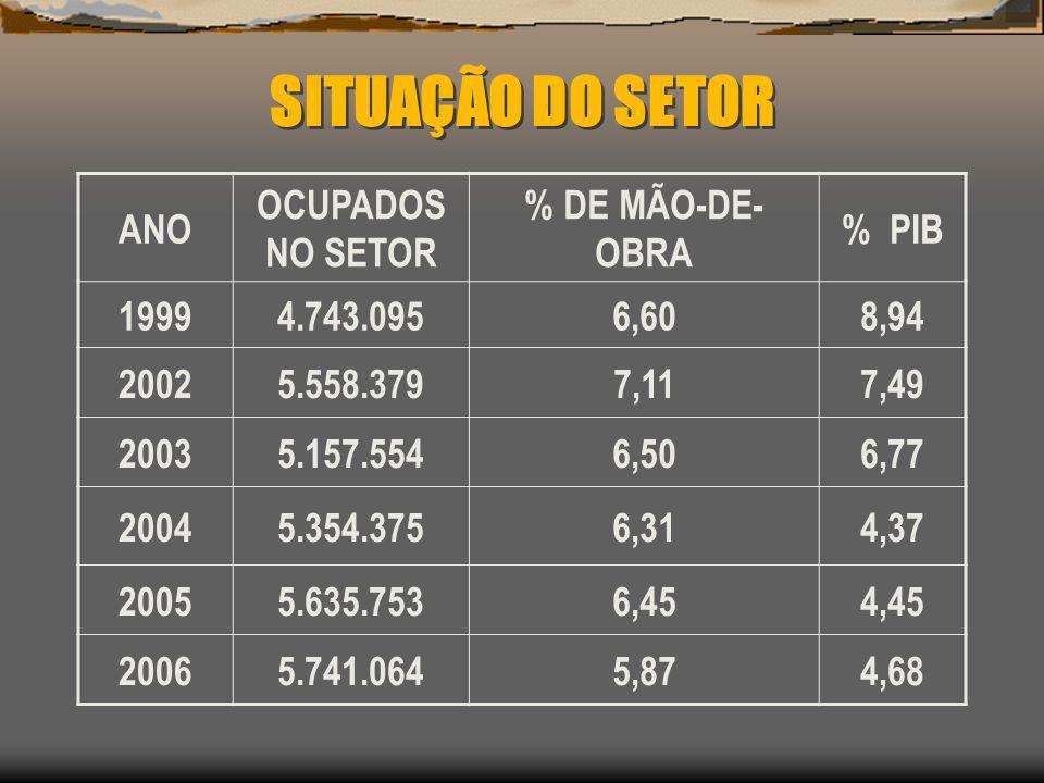 SITUAÇÃO DO SETOR ANO OCUPADOS NO SETOR % DE MÃO-DE- OBRA % PIB 19994.743.0956,608,94 20025.558.3797,117,49 20035.157.5546,506,77 20045.354.3756,314,3
