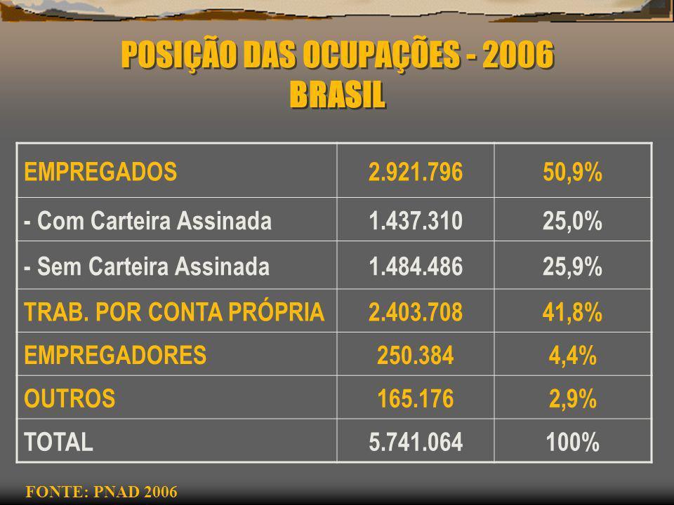 POSIÇÃO DAS OCUPAÇÕES - 2006 BRASIL EMPREGADOS2.921.79650,9% - Com Carteira Assinada1.437.31025,0% - Sem Carteira Assinada1.484.48625,9% TRAB. POR CON