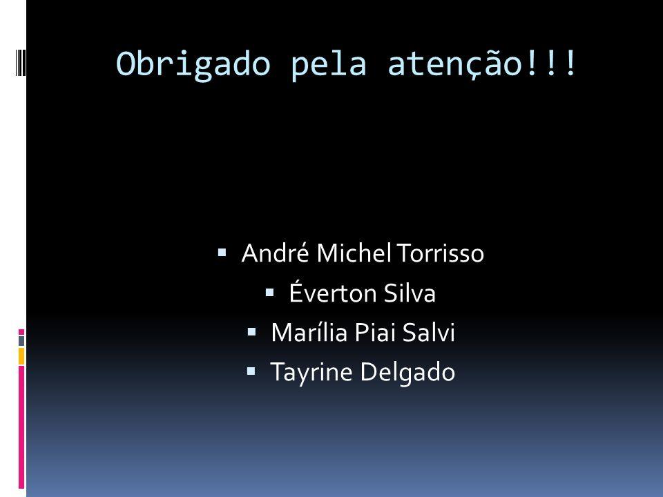 Obrigado pela atenção!!! André Michel Torrisso Éverton Silva Marília Piai Salvi Tayrine Delgado