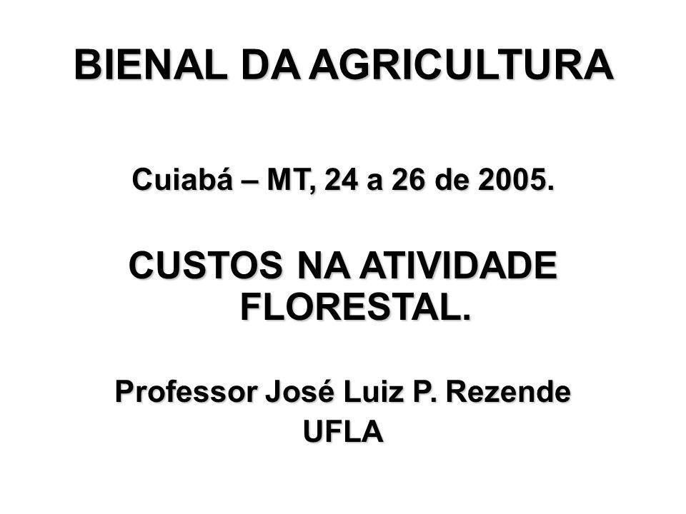 BIENAL DA AGRICULTURA Cuiabá – MT, 24 a 26 de 2005. CUSTOS NA ATIVIDADE FLORESTAL. Professor José Luiz P. Rezende UFLA