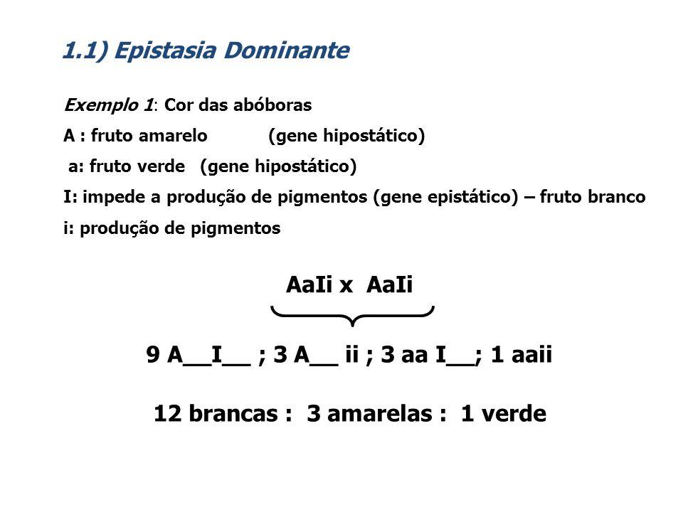 1.2) Epistasia Recessiva Exemplo 1: Cor da pelagem em ratos A: aguti a: preta C: formação do pigmento c: ausência de pigmentos AaCc x AaCc 9 A__C__ ; 3 aa C__; 3 A__ cc; 1 aacc 9 aguti : 3 pretos : 4 albinos