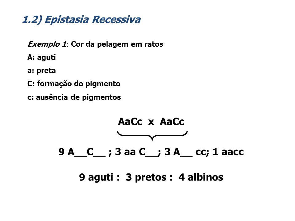 Exemplo: Surdez no homem (epistasia duplamente recessiva) D: formação da cóclead: não-formação da cóclea E: formação do nervo auditivoe: não-formação do nervo auditivo DdEe x DdEe 9 D__E__ ; 3 D__ ee ; 3 dd E__; 1 ddee 9 normais : 7 surdos 1.3) Epistasia Duplamente Recessiva