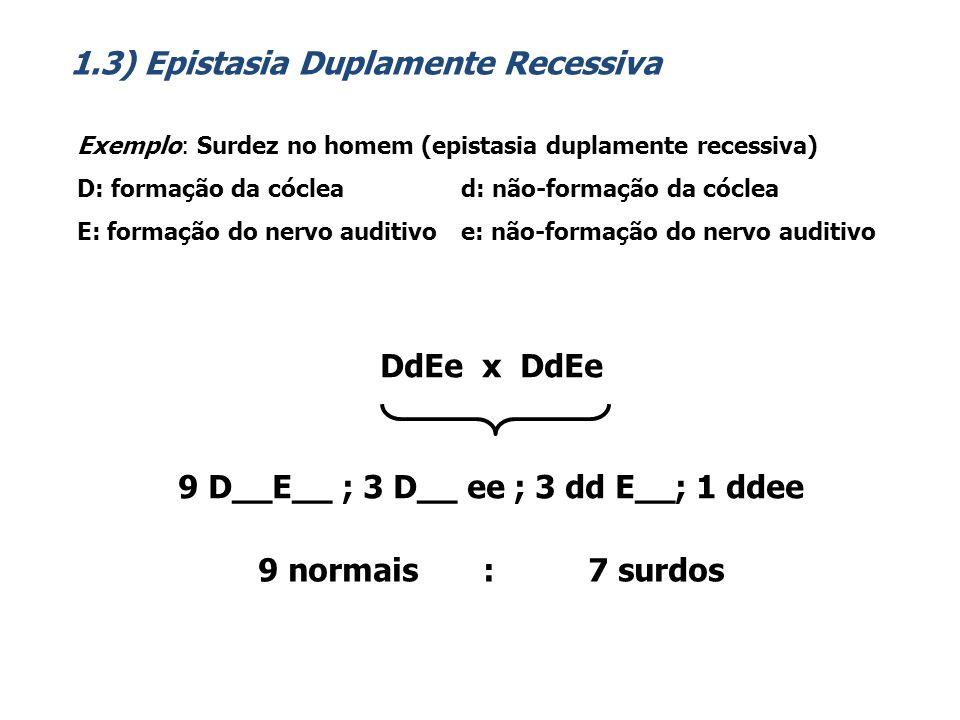 Exemplo : Cor do pimentão Capsicum annuun R: pigmento vermelho r: sem pigmento vermelho C: decomposição da clorofila c: persistência da clorofila RrCc x RrCc 9 R__C__ ; 3 R__ cc ; 3 rr C__; 1 rrcc 9 vermelhos : 3 marrons : 3 amarelos : 1 verde