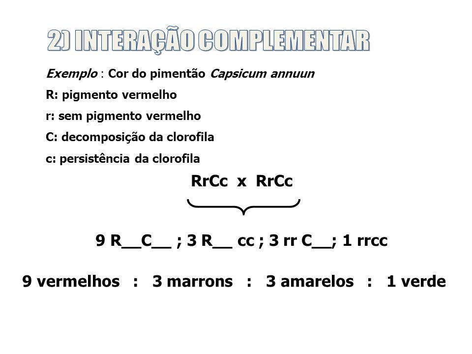 Proporções Fenotípicas AaBb x AaBb 2ª Lei de Mendel 9 : 3 : 3 : 1 Epistasia Dominante 12 : 3 : 1 ou 13 : 3 Epistasia Recessiva 9 : 4 : 3 Epistasia Duplamente Recessiva 9 : 7 Interação Complementar 9 : 6 : 1 ou 9 : 3 : 3 : 1