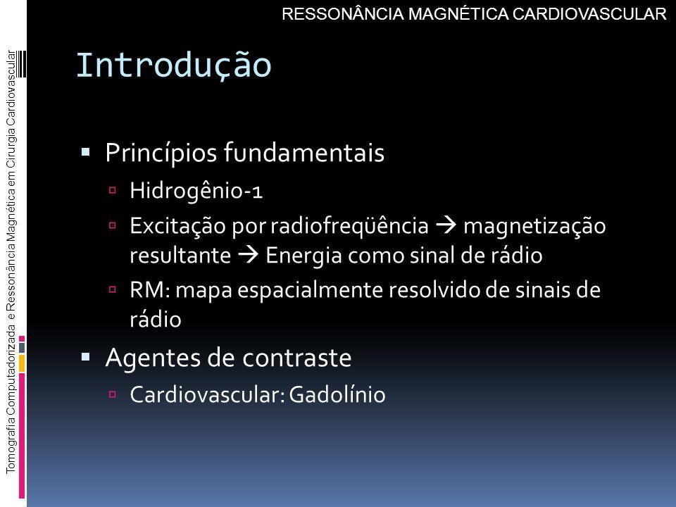 Introdução Princípios fundamentais Hidrogênio-1 Excitação por radiofreqüência magnetização resultante Energia como sinal de rádio RM: mapa espacialmen
