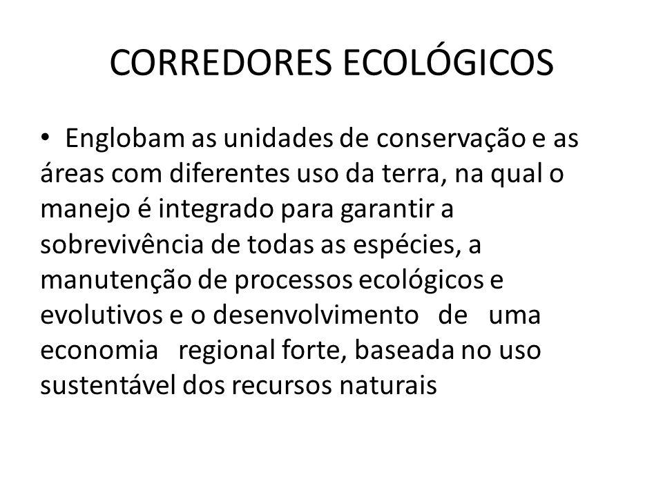 Área de Proteção Ambiental Objetivos: – Proteger a diversidade biológica – Disciplinar o processo de ocupação – Assegurar a sustentabilidade do uso dos recursos naturais Terras Publicas e privadas – com restrições ao uso Pesquisas cientificas e visitações publicas – restritas Em geral se caracterizam por áreas mais extensas