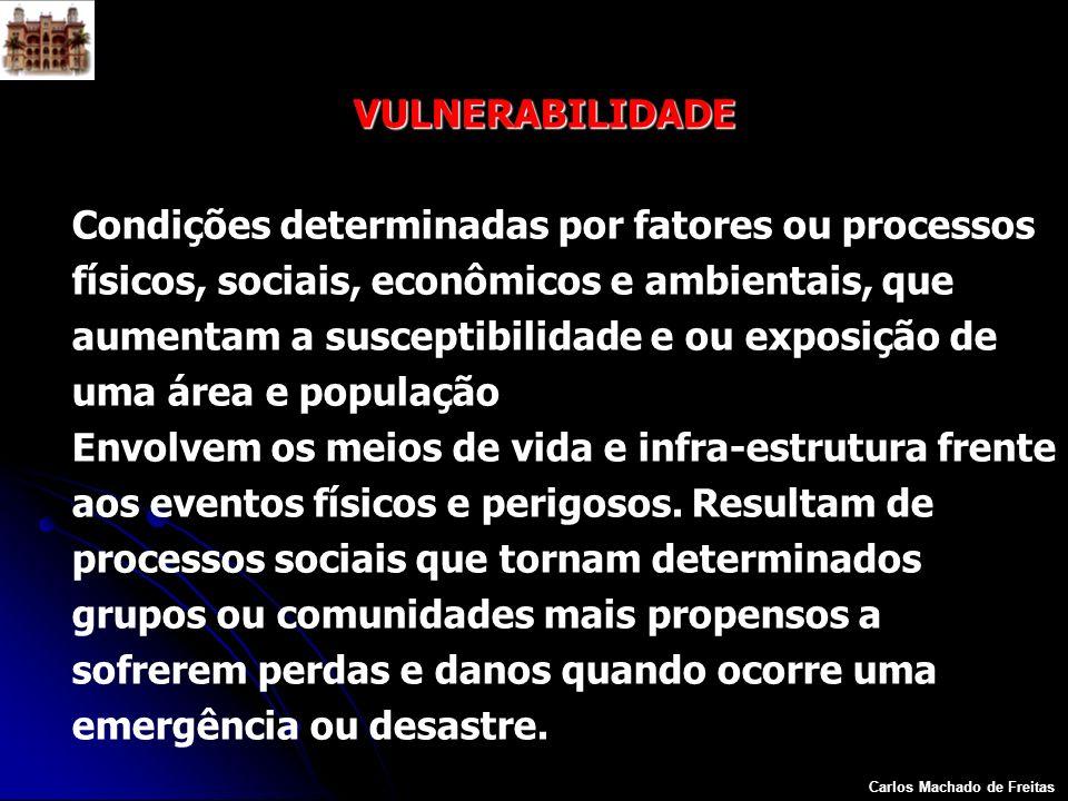 Carlos Machado de Freitas VULNERABILIDADE Condições determinadas por fatores ou processos físicos, sociais, econômicos e ambientais, que aumentam a su