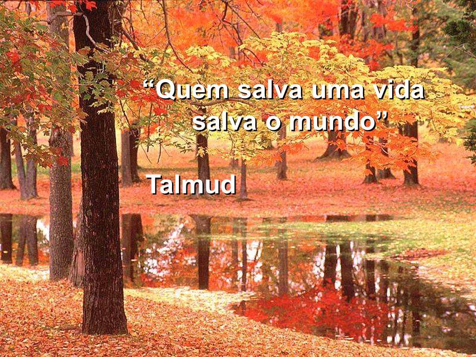 Quem salva uma vida salva o mundo Talmud Quem salva uma vida salva o mundo Talmud