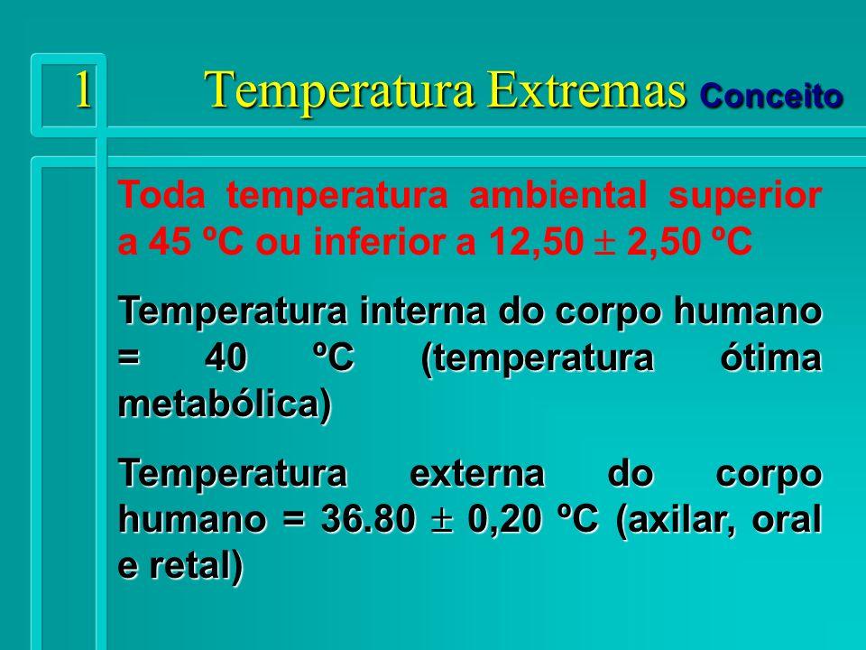 12 Temperaturas Extremas Atividades ocupacionais Com perda de calor - trabalhos ao ar livre em climas frios em regiões de grandes altitudes - trabalhos ao ar livre em algumas zonas temperadas, no inverno - em ambientes artificiais, como as câmaras frigoríficas de conservação.