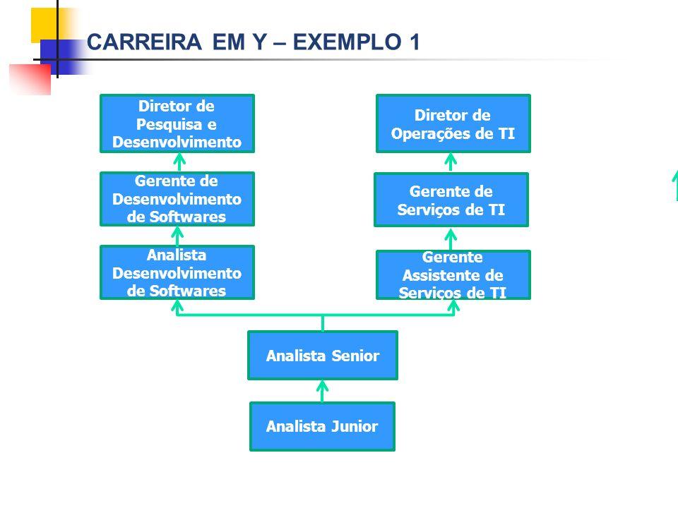 CARREIRA EM Y – EXEMPLO 1 Diretor de Pesquisa e Desenvolvimento Diretor de Operações de TI Gerente de Desenvolvimento de Softwares Gerente de Serviços