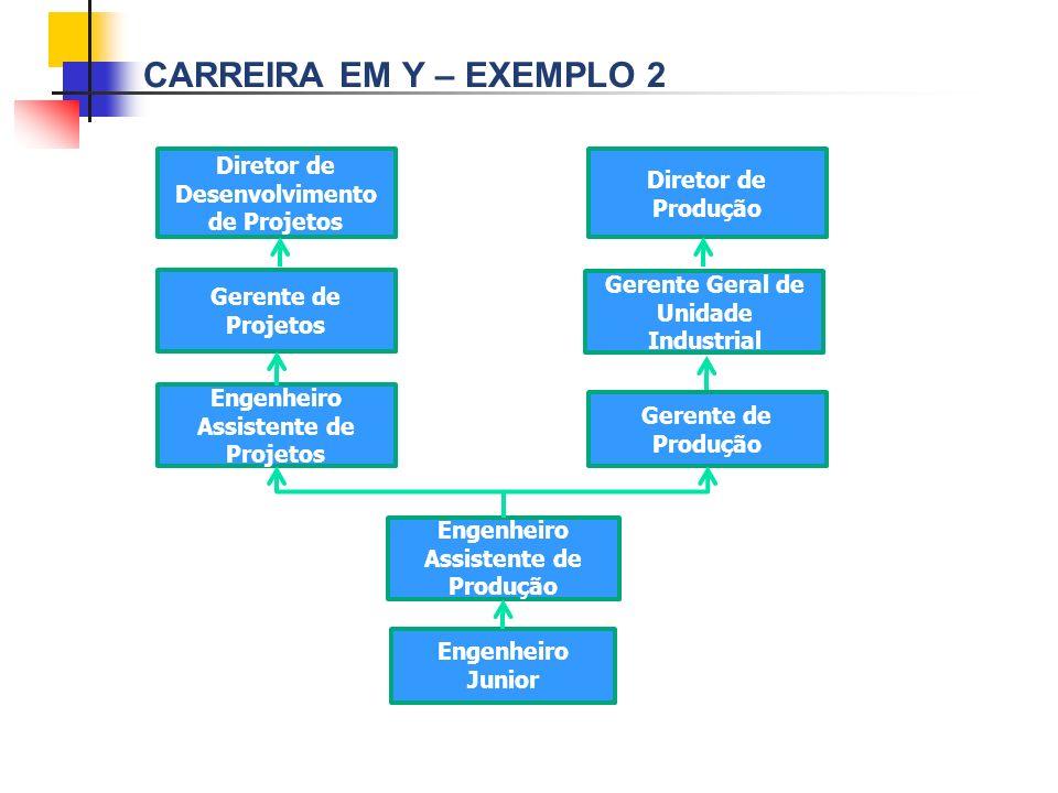 CARREIRA EM Y – EXEMPLO 2 Diretor de Desenvolvimento de Projetos Diretor de Produção Gerente de Projetos Gerente Geral de Unidade Industrial Engenheir