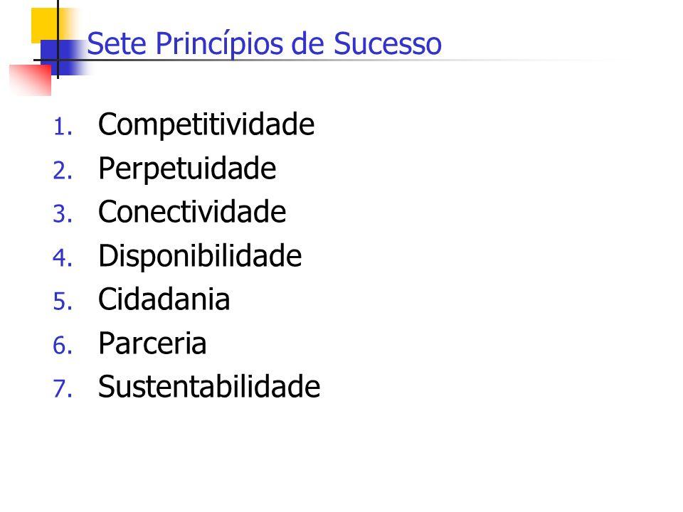 Sete Princípios de Sucesso 1. Competitividade 2. Perpetuidade 3. Conectividade 4. Disponibilidade 5. Cidadania 6. Parceria 7. Sustentabilidade