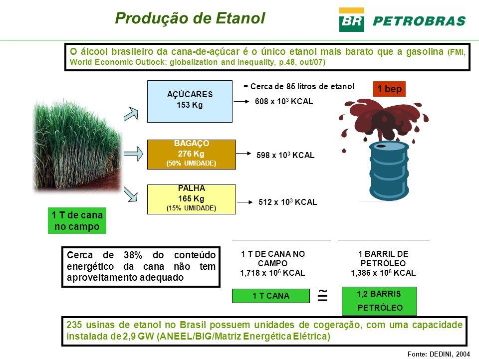 Matéria-PrimaSituação Sacaríneos Tecnologia totalmente dominada no Brasil Amiláceos Petrobras já possuiu usina de álcool de mandioca EUA produzem álcool de milho Petrobras está desenvolvendo tecnologia para produção de álcool a partir de torta de mamona Celulósicos Petrobras está testando unidade piloto No Brasil e no mundo, outras empresas estão realizando pesquisas Tecnologias para a produção de etanol