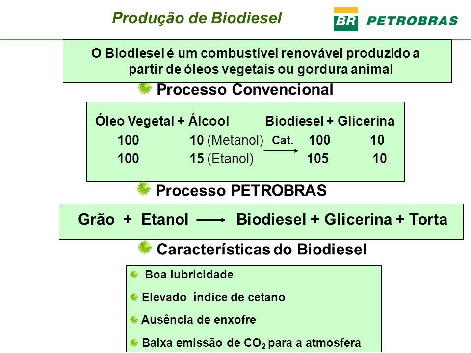 Programa Brasileiro de Biodiesel 2008 A 2007 (2% autorizativo) 2008 A 2012 (2% obrigatório desde janeiro) (3% a partir de julho) 2013 em diante (5% obrigatório ) Lei 11.097/2005 Lei 11.097/2005 B5: Meta pode ser antecipada devido aos resultados obtidos nos testes com frotas e pela capacidade produtiva já instalada.