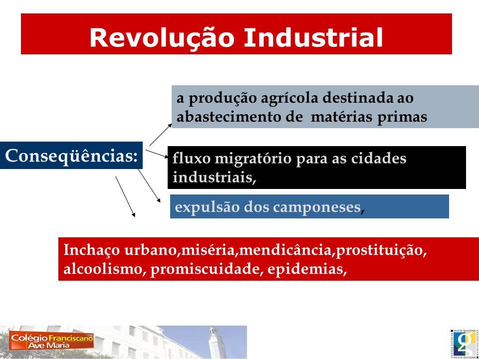 Conseqüências: a produção agrícola destinada ao abastecimento de matérias primas fluxo migratório para as cidades industriais, expulsão dos camponeses