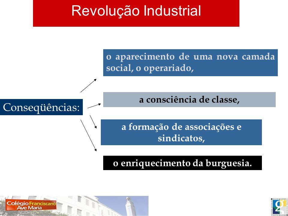 Conseqüências: o aparecimento de uma nova camada social, o operariado, a consciência de classe, a formação de associações e sindicatos, o enriquecimen
