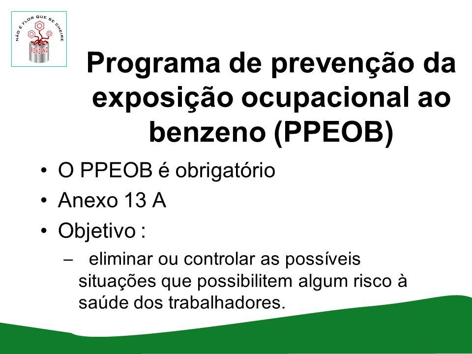 O PPEOB é obrigatório Anexo 13 A Objetivo : – eliminar ou controlar as possíveis situações que possibilitem algum risco à saúde dos trabalhadores.