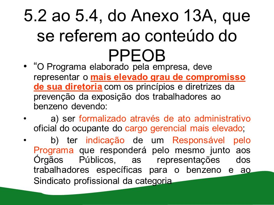 5.2 ao 5.4, do Anexo 13A, que se referem ao conteúdo do PPEOB O Programa elaborado pela empresa, deve representar o mais elevado grau de compromisso d