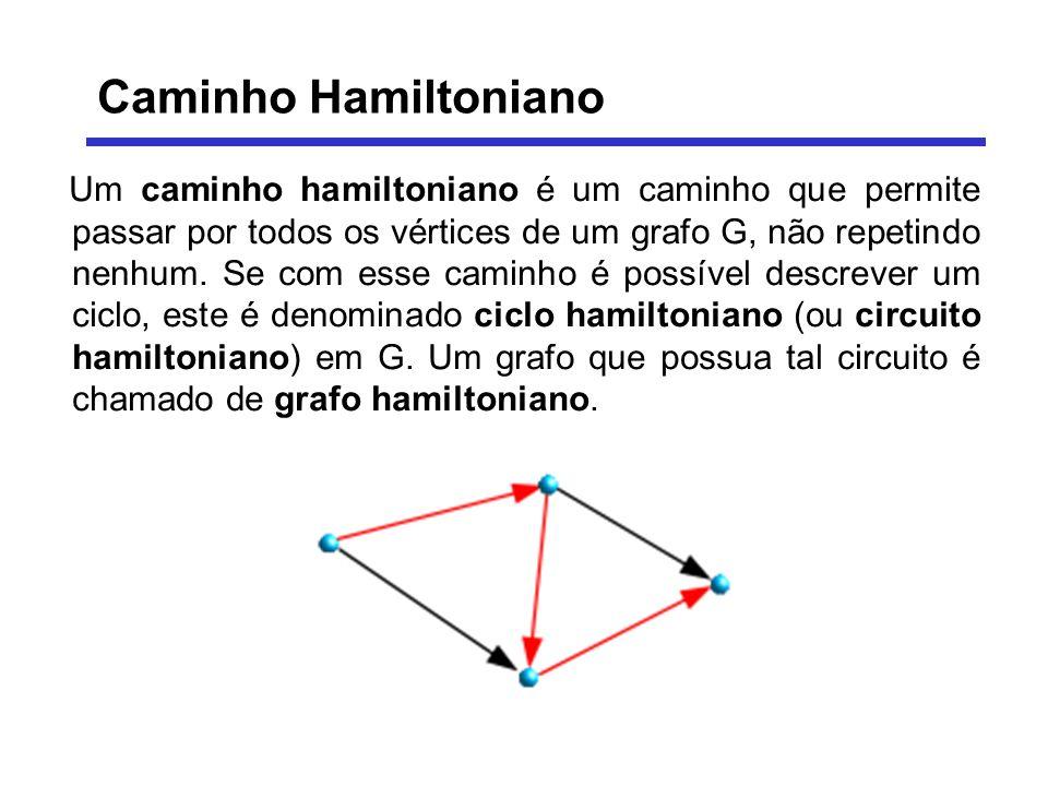 Um caminho hamiltoniano é um caminho que permite passar por todos os vértices de um grafo G, não repetindo nenhum. Se com esse caminho é possível desc