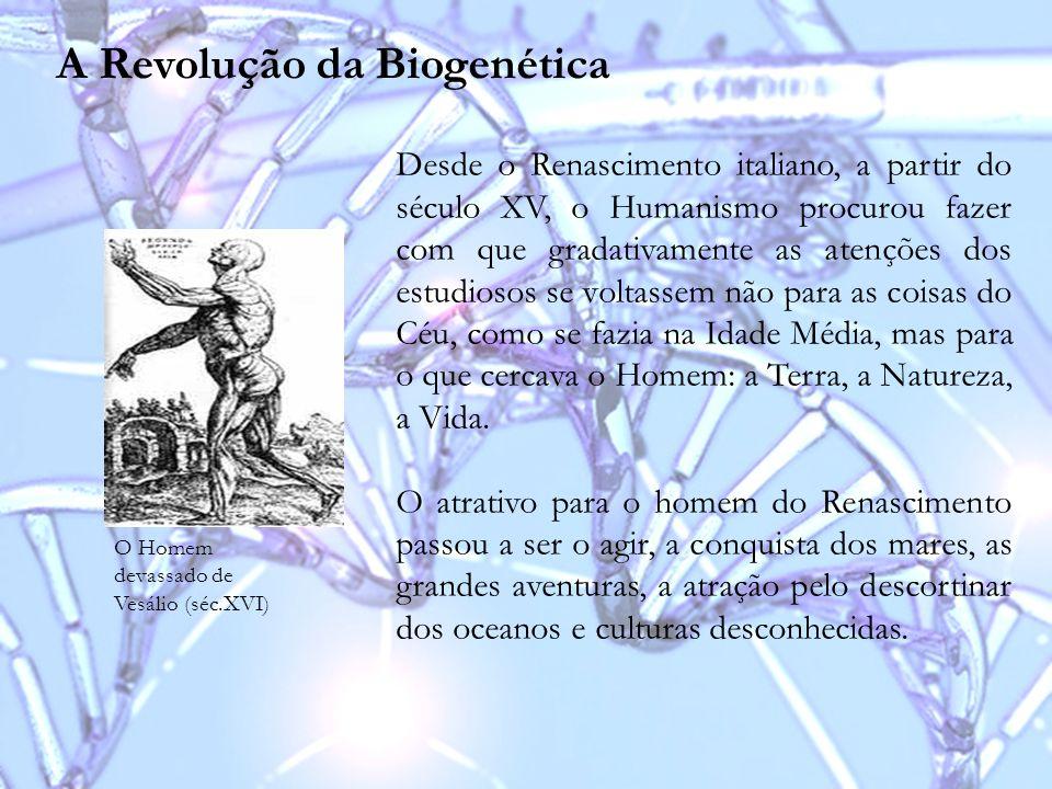 A Revolução da Biogenética O Homem devassado de Vesálio (séc.XVI) Desde o Renascimento italiano, a partir do século XV, o Humanismo procurou fazer com