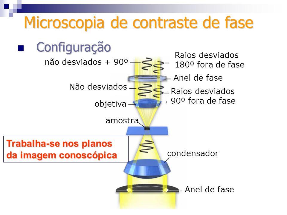 Microscopia de contraste de fase Configuração Configuração Parte central do anel mais fina que a periferia Contraste positivo Parte central do anel mais fina que a periferia Contraste negativo